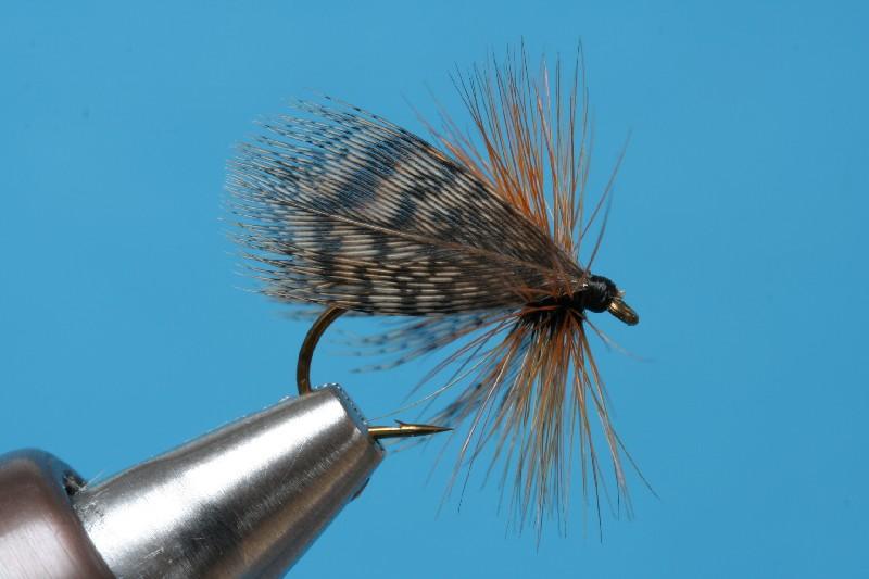 Baxmann partridge fly