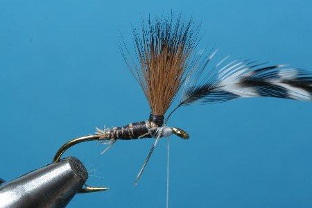Fliegentom Streamer 3 Stück  Clouser Deep Minnow weiß//blau